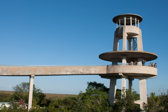 Everglades, observation tower
