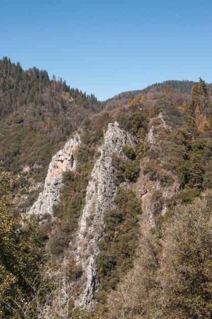 sequoia scene 1